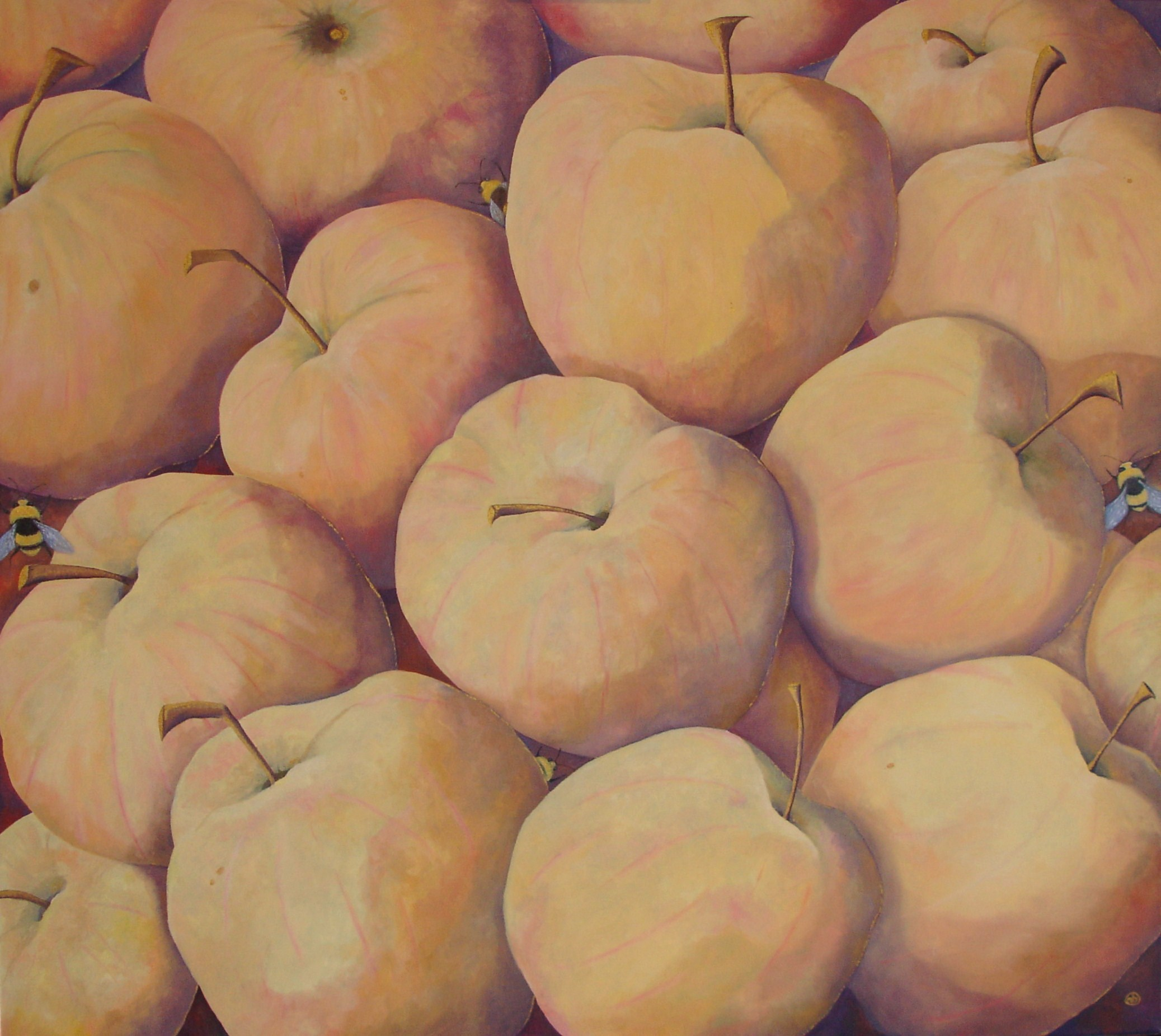 Apples 36 x 40 in